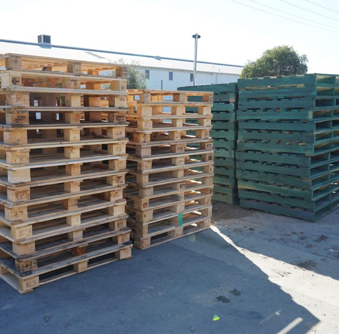 Plain and Coloured Pallets